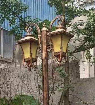【led庭院灯案例】四川省达州市小区亮化工程